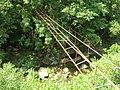 Puente hacia el bosque (2227778033).jpg