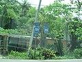 Puerto Rico Highway 159.jpg