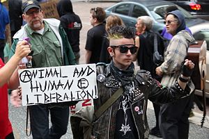 Punk ideologies - A punk protester carries a sign including an anarchy symbol.