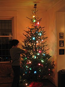 Putting the lights on the tree.jpg