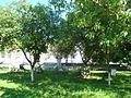 RO CJ Biserica reformata din Fizesu Gherlii (123).JPG