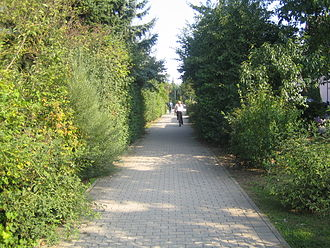 Katzbach Railway - Cycle path on the closed Odenheim-Hilsbach section