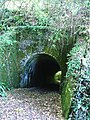 Railway Tunnel-Footpath, Brixton-Brixton Torr - geograph.org.uk - 66725.jpg