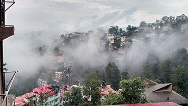 Foggy Rain in Shimla by www.sameerkumar.website