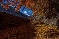 Rakaposhi, Hunza, Gilgit-Baltistan.jpg