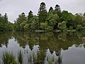Ratherheath Tarn by Nigel Brown 02.jpg