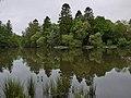 Ratherheath Tarn by Nigel Brown 02.jpg