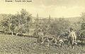 Razglednica Strunjana 1910.jpg