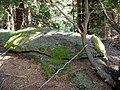 Reinischkogel Felsblock im Wald.jpg