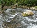 Reka Jerma 05.JPG