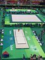 Rio 2016 Olympic artistic gymnastics qualification men (28520776433).jpg