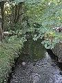 River Alun-Afon Alun - geograph.org.uk - 1502506.jpg