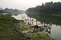 River Churni - Halalpur Krishnapur - Nadia 2016-01-17 9060.JPG
