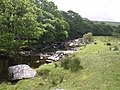 River Erme at Piles Copse - geograph.org.uk - 1357249.jpg