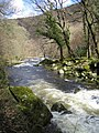 River Lyn - geograph.org.uk - 202857.jpg