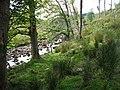 River Ure - geograph.org.uk - 188096.jpg