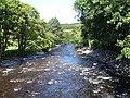 River Vyrnwy - geograph.org.uk - 509985.jpg