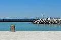 Robben Island Tour 4.jpg