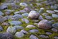Rock path 4891036716.jpg
