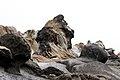 Rocky Waves - panoramio - Vadim Manuylov.jpg