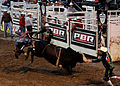 Rodeo of the Ozarks 001.jpg