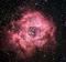 Rosette Nebula NGC 2237 - C49. png