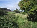 Route of old Sidmouth railway line - geograph.org.uk - 1000442.jpg