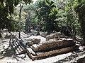 Ruinas MAYA Copan Honduras 10.jpg