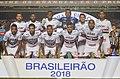 São Paulo x Atletico Mineiro (41876973502).jpg