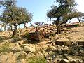 SHRI GOVERDHAN DHAM - panoramio.jpg