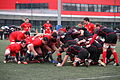 ST vs LOU espoirs 2013 (63).JPG