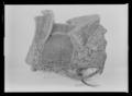 Sadel, Frankrike, 1600-talets mitt - Livrustkammaren - 53323.tif