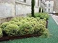 Saintes, Poitou-Charentes, France - panoramio - M.Strīķis (2).jpg
