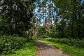 Sakaliny local biological reserve p02.jpg
