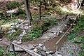 Saligenwanderung Aufstieg Rupertiberg Kneipp Bach 23092006 03.jpg