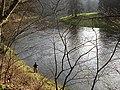 Salmon fishing on the River Tweed - geograph.org.uk - 685976.jpg