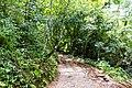 Samaná Province, Dominican Republic - panoramio (151).jpg