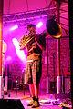 Sammersee 2014 Festival Kofelgschroa (12).jpg