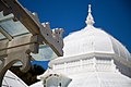 San Francisco Conservatory of Flowers-27.jpg