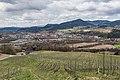 Sankt Georgen am Längsee Taggenbrunn Weingut Blick auf St. Veit 14042021 0793.jpg