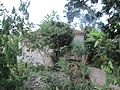 Sao Tome 4 (16247157101).jpg