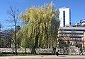 Sarajevo zagrebacka street IMG 1220.jpg