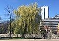 Sarajevo zagrebacka street IMG 1221.jpg