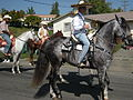 Seattle - Fiestas Patrias Parade 2008 - horses 13.jpg