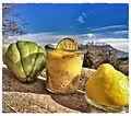 Sechium edule - Mousse de citrons de Menton et creme de Chayotte parsemé de Roudor.jpg