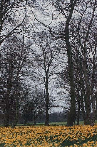 Sefton Park - Sefton Park