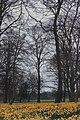 Sefton Park 6.jpg