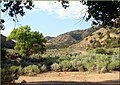 Sego Canyon, UT 8-26-12 (8003845010).jpg