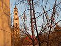 Senamiestis, Vilnius, Lithuania - panoramio (113).jpg