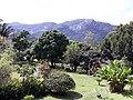 Serra de Petrópolis.jpg